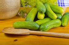 Polish Garlic Cucumbers (ingredients) Stock Photo