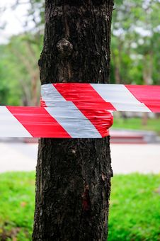 Free No Entry Through The Tree Row Royalty Free Stock Photography - 20471327