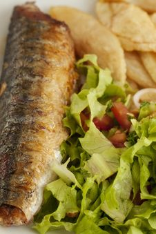 Free Fish&Chips Closeup Royalty Free Stock Photos - 20474188