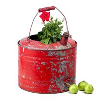 Red Flower In Ancient Gas Container Royalty Free Stock Image
