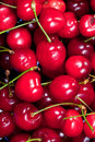 Free Red Sweet Cherry Royalty Free Stock Image - 20481816