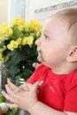 Free Kitchen Baby Stock Photo - 20482160