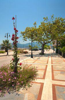 Free Nea Vrasna, Greece Royalty Free Stock Photos - 20481228
