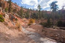 Free Path Along A Creek Royalty Free Stock Photo - 20481315