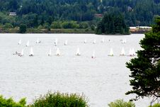 Free Sail Boats On The River Royalty Free Stock Photo - 20483085