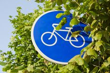 Free Bicycle Track Sign And Tree Leafs Stock Images - 20483914