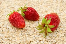 Free Ripe Strawberries On Background Of Dry Oat Royalty Free Stock Image - 20483996