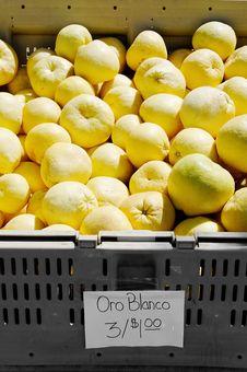 Free Oro Blanco Stock Photos - 20487733
