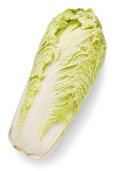 Free Celery Cabbage Stock Photos - 20488323
