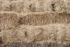 Free Haystack Royalty Free Stock Images - 20488659
