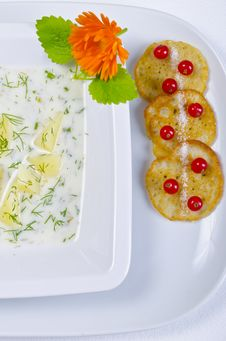 Free Polish Dill Soup Royalty Free Stock Photo - 20488785