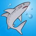 Free Shark Royalty Free Stock Image - 20497656