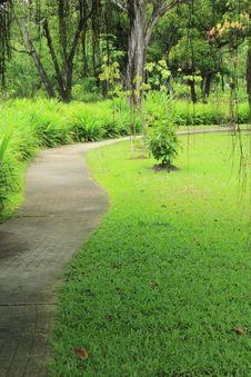 Free Pathway Royalty Free Stock Photo - 20493975
