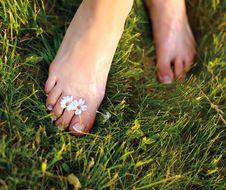 Free Relaxing Woman Feet Stock Photos - 20494573