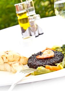 Free Main Course Royalty Free Stock Image - 20495356