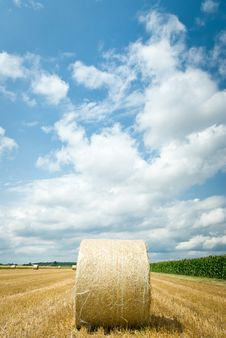 Free Straw Bales Stock Images - 20495844