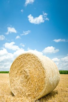 Free Straw Bales Stock Images - 20495854