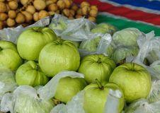 Free Fresh Guava Fruit Royalty Free Stock Photos - 20495948