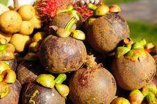 Free Mangosteen Fruit Stock Photo - 20496190
