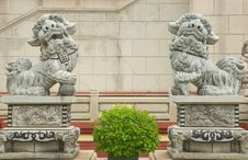 Free Lion Statue Royalty Free Stock Images - 20498599