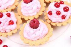 Free Tartlets Royalty Free Stock Images - 20498899