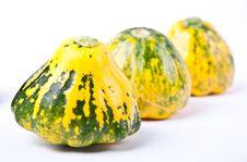 Free Little Pumpkins Stock Photography - 20499002