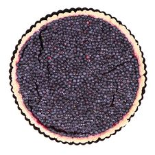 Free Blueberry Tart Royalty Free Stock Image - 20499136