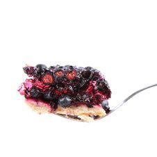 Free Blueberry Tart Stock Photography - 20499152