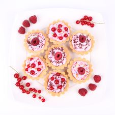 Free Tartlets Royalty Free Stock Photo - 20499165