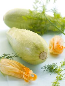 Free Zucchini Stock Image - 20499831
