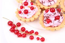 Free Tartlets Royalty Free Stock Images - 20499929