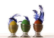 Free Eggs Stock Photos - 2051963