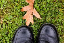 Free Autumn Shoes 2 Stock Photography - 2052322