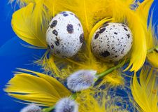 Free Easter Eggs Royalty Free Stock Photo - 2052555