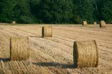 Free Bales On Stubble Field Royalty Free Stock Photos - 2053748