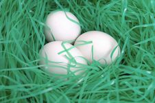 Free Easter Eggs Stock Images - 2053964