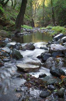 Free Flowing Creek Stock Photos - 2054343