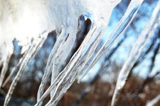 Free Ice Ice Royalty Free Stock Photo - 2055035