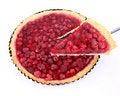 Free Raspberry Tart Stock Photography - 20501292
