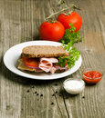 Free Plate With Sandwich And Two Kind Of Sauces Royalty Free Stock Photo - 20501885