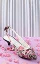 Free Floral Pattern Women Shoe Royalty Free Stock Image - 20508006