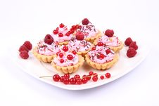 Free Tartlets Royalty Free Stock Image - 20500056