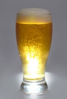 Free Beer Is In Glass Stock Images - 20500994