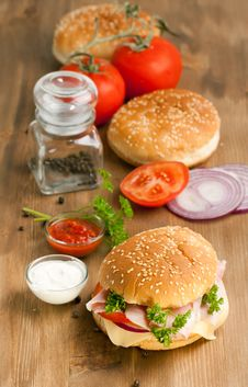 Fresh Burger With Vegetables Stock Image