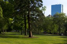 Boston Public Garden In The Summer Stock Photo