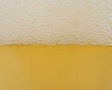 Free Beer Bubbles Stock Photography - 20504392