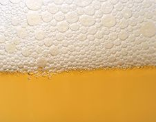 Free Beer Bubbles Royalty Free Stock Images - 20504449