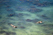 Free Snorkeling Royalty Free Stock Photos - 20505048
