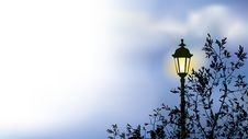 Glowing Lantern Near The Branches Of Spring Tree Royalty Free Stock Photos