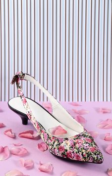 Free Floral Pattern Women Shoe Royalty Free Stock Image - 20508006